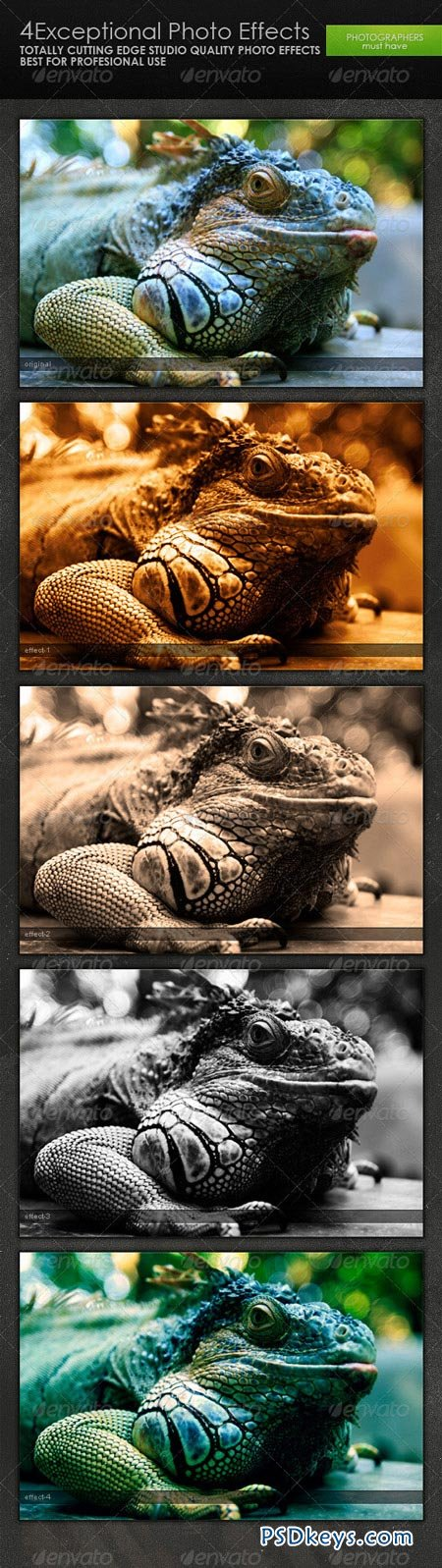 Exceptional Photo Effects 235971