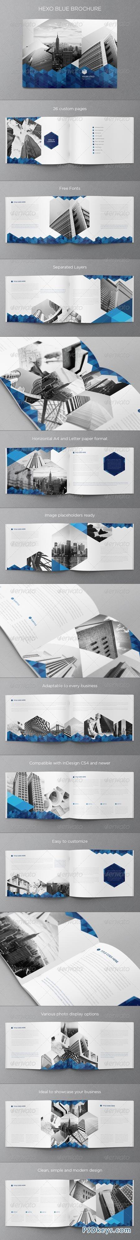 Real Estate Blue Hexo Brochure 6446056