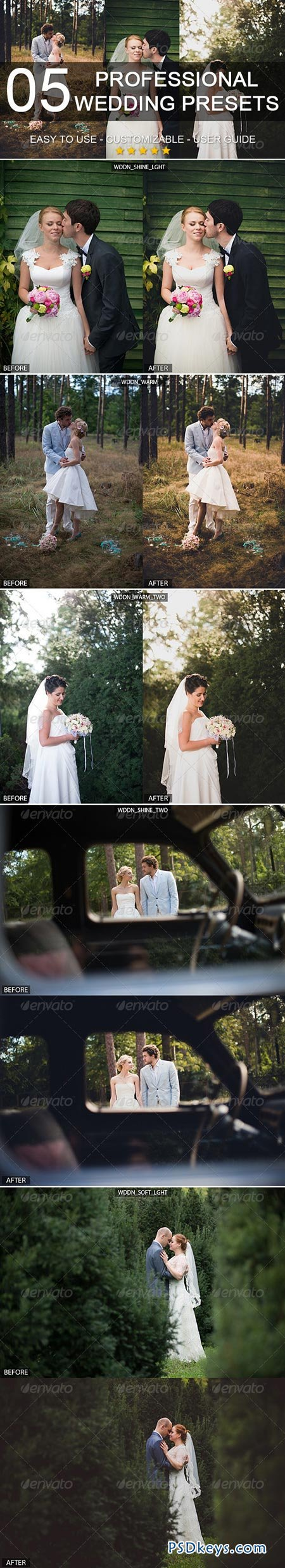 5 professional wedding presets 6124926