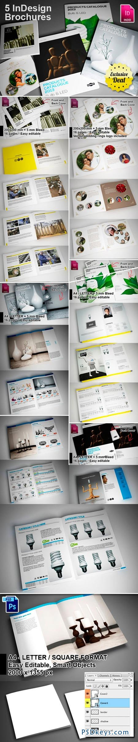 5 InDesign Brochure Templates » Free Download Photoshop Vector Stock ...