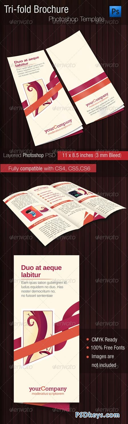Tri fold brochure psd template 2582042 free download for Tri fold brochure template psd
