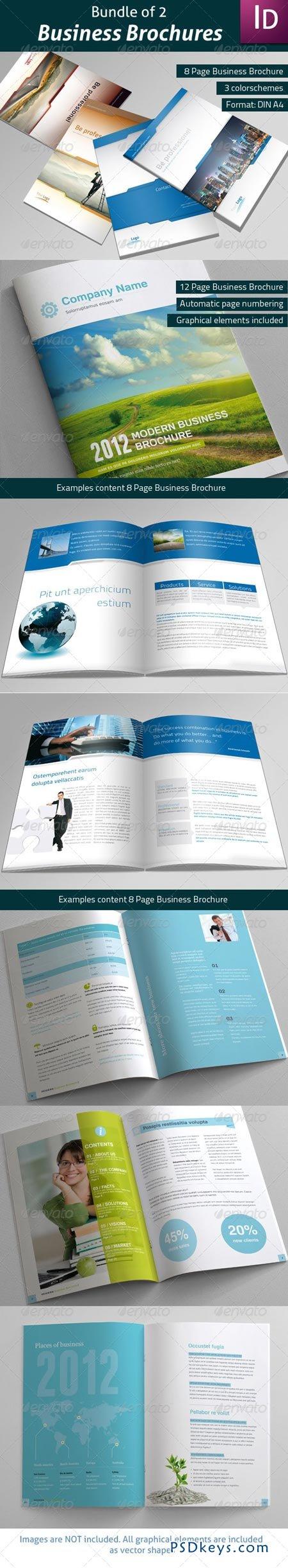 Bundle of 2 Business Brochures 3477908