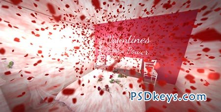 Valentines Flower Power - After Effects Project