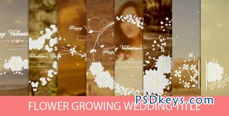 Flower Growing Wedding Title - After Effects Project