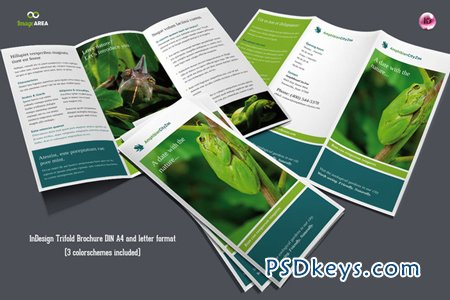 Flexible Trifold Brochure 3 Colors 7853