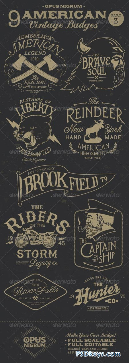 American Vintage Badges Part 3 7679228