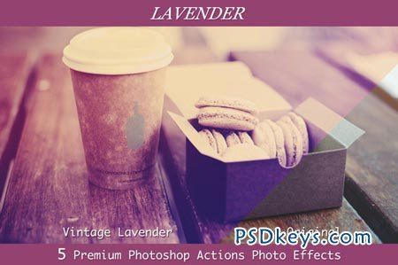 Lavender - 6 Professional PS Actions 28501