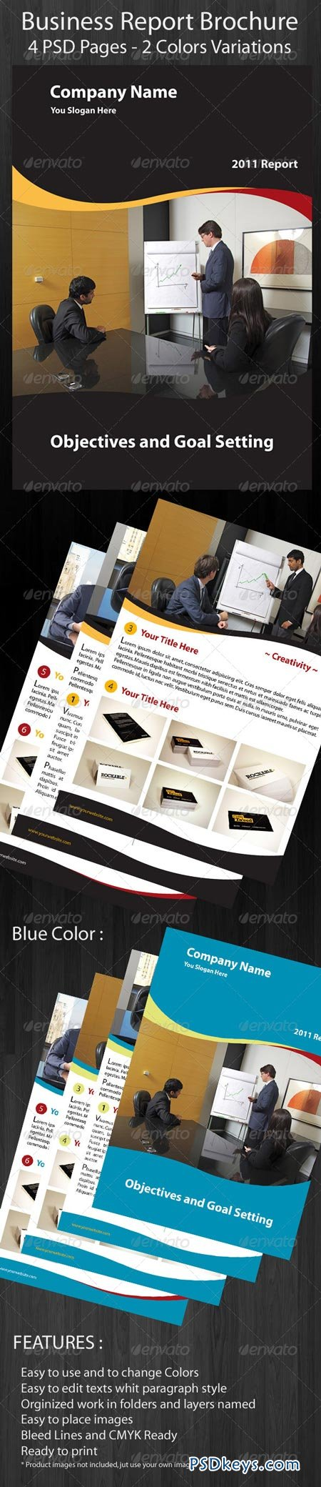 Business Brochure Report 158697