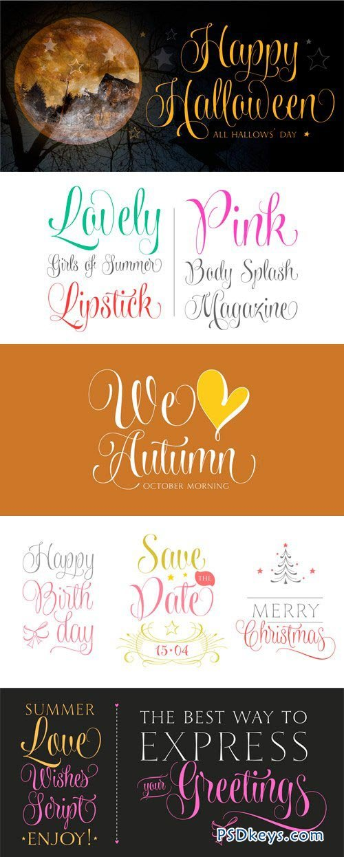 Wishes Script Font Family - 18 Fonts for $200