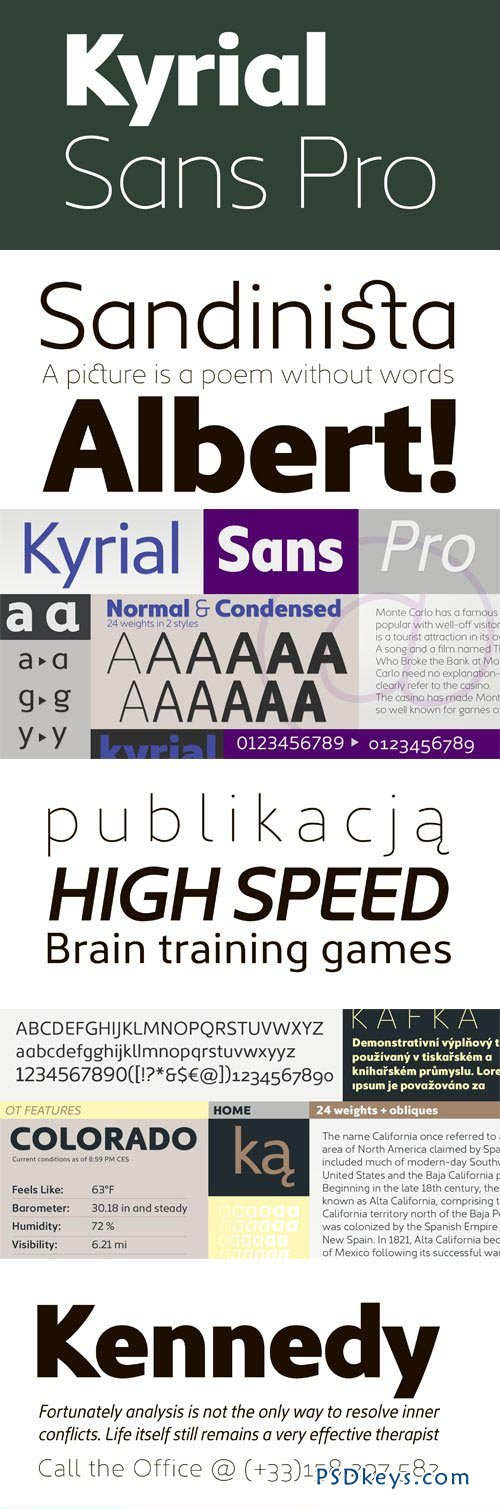 Kyrial Sans Pro Font Family - 12 Fonts (Incomplete Family) for $299