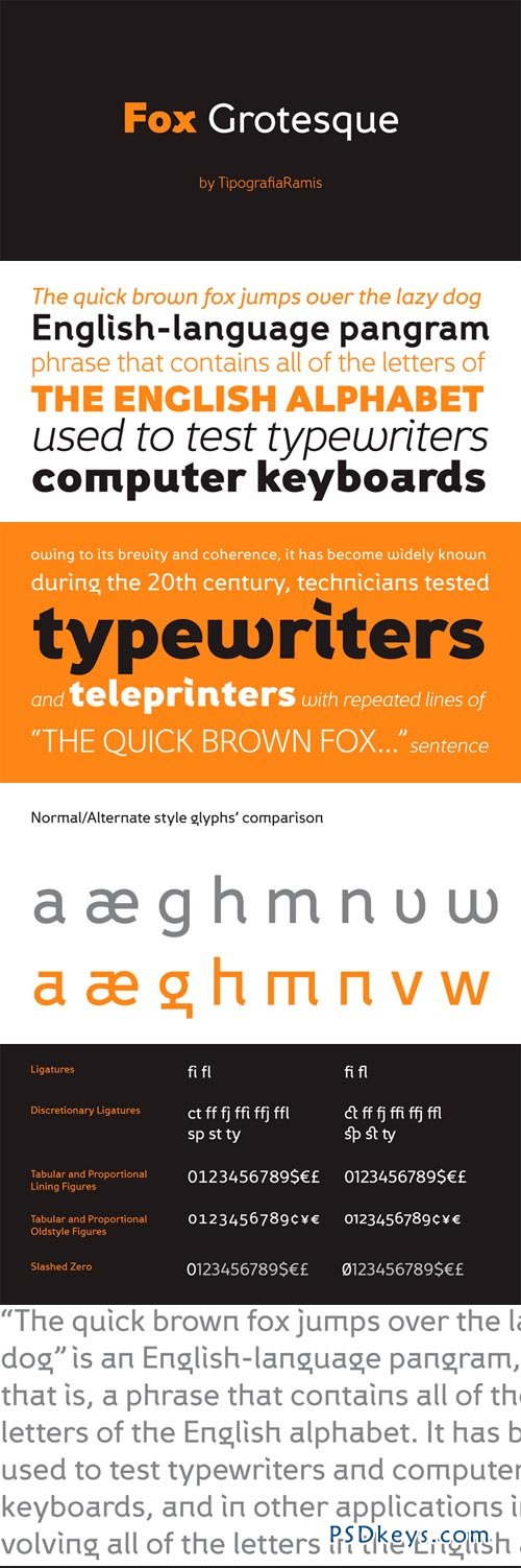 Fox Grotesque Font Family - 12 Fonts for $200 » Free