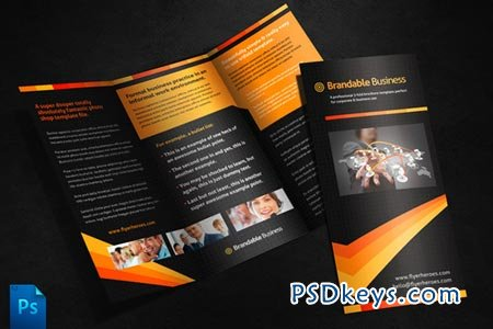 Business Tri Fold Brochure Template 250 Free Download Photoshop