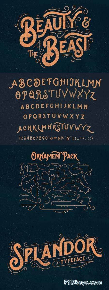 Splandor Font for $15