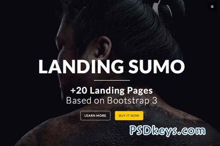 LandingSumo +20 Landing Pages 91723