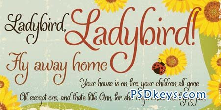 Ladybird Font for $19