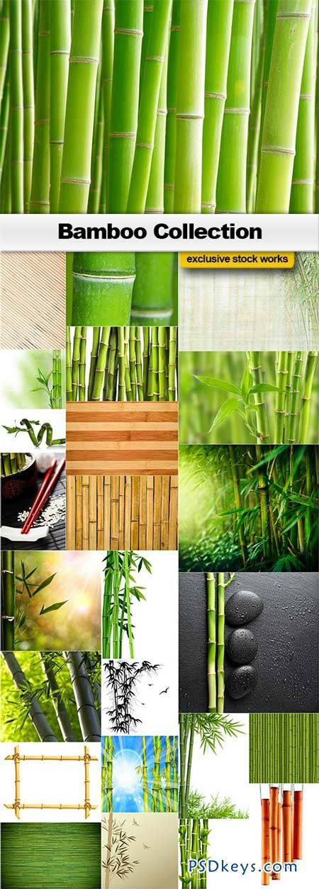 Bamboo Collection - 25xJPEGs