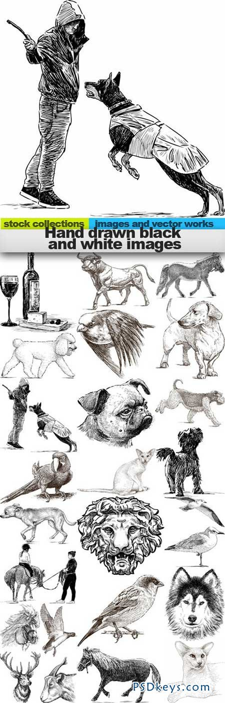 Hand drawn black and white images 25xEPS