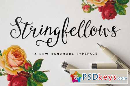 Stringfellows Typeface 64135