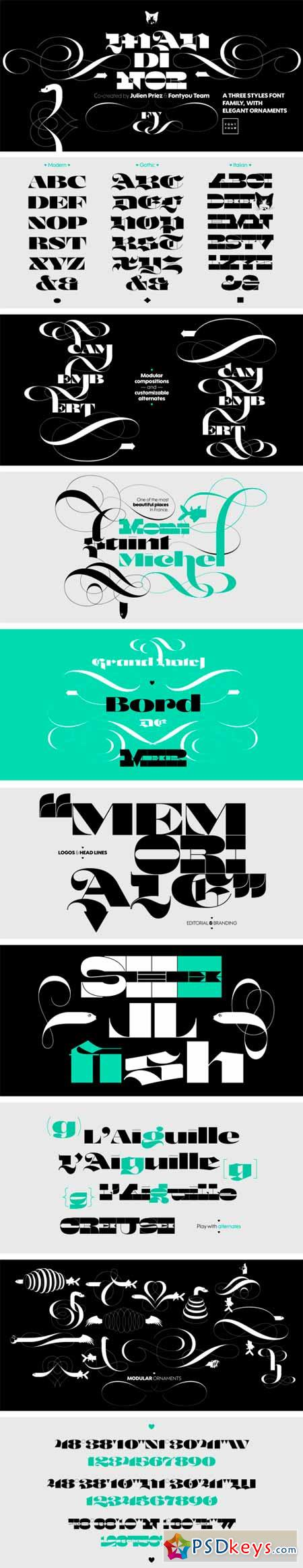 Mandinor FY Font Family - 4 Fonts for $100