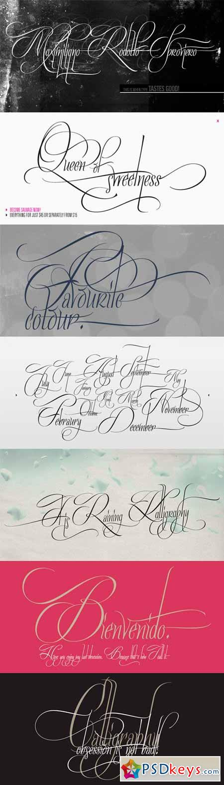 Quijote Sauvage Font Family - 8 Fonts for $115
