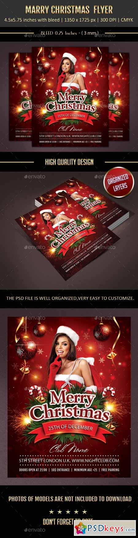 Merry Christmas Flyer 9648780