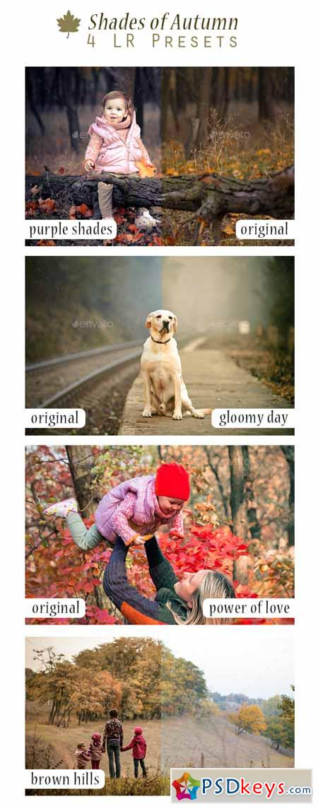 Shades of Autumn - 4 LR Presets 9241900