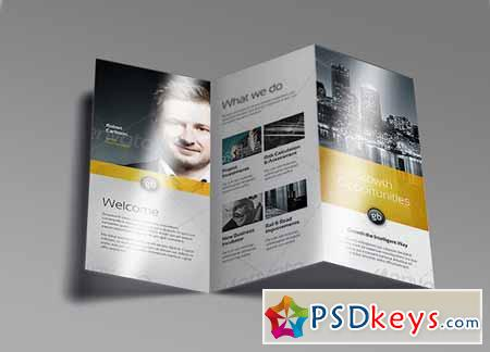Tri Fold Brochure Mock-Up 9 128481