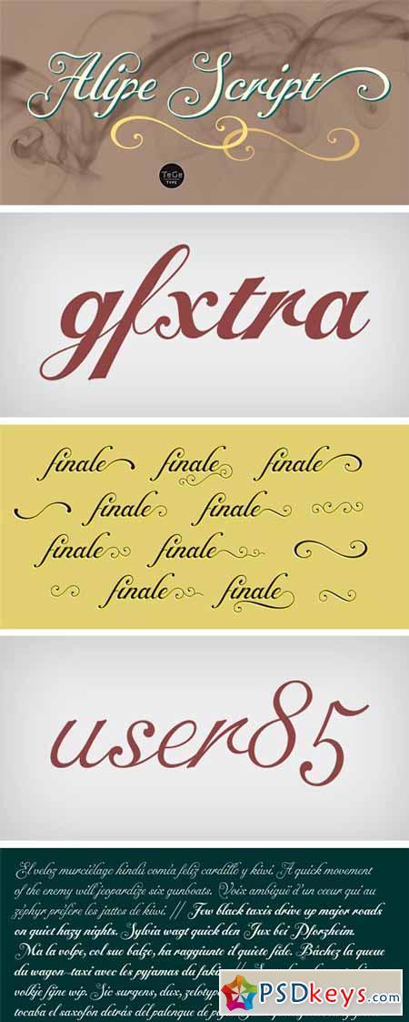 Alipe Script Font Family - 3 Fonts $69