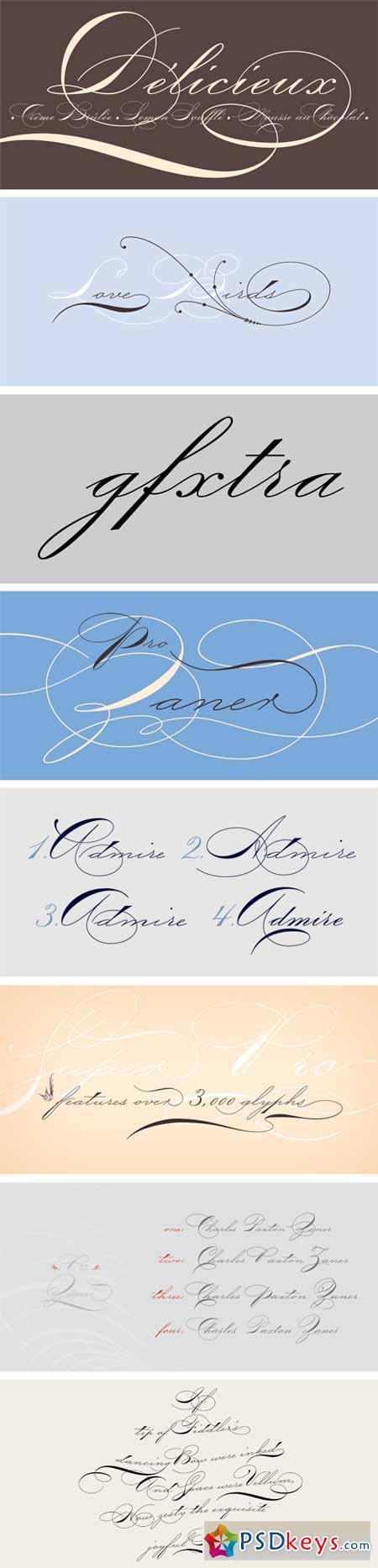 P22 Zaner Pro Font Family - 4 Fonts $120