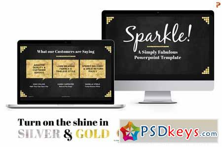 Sparkle Gold & Silver PPT Templates 140858