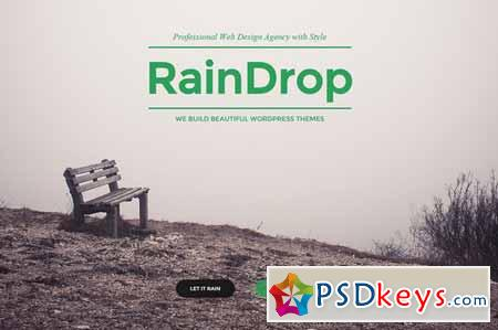 RainDrop - A Multipurpose Theme 77308