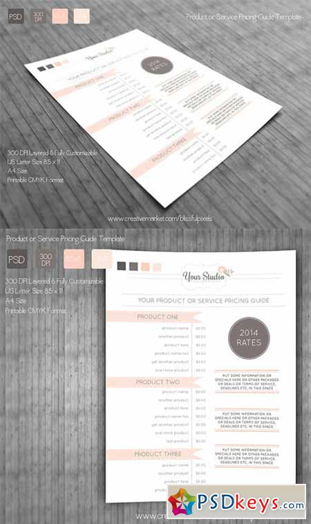 Pricing Guide Template 139873