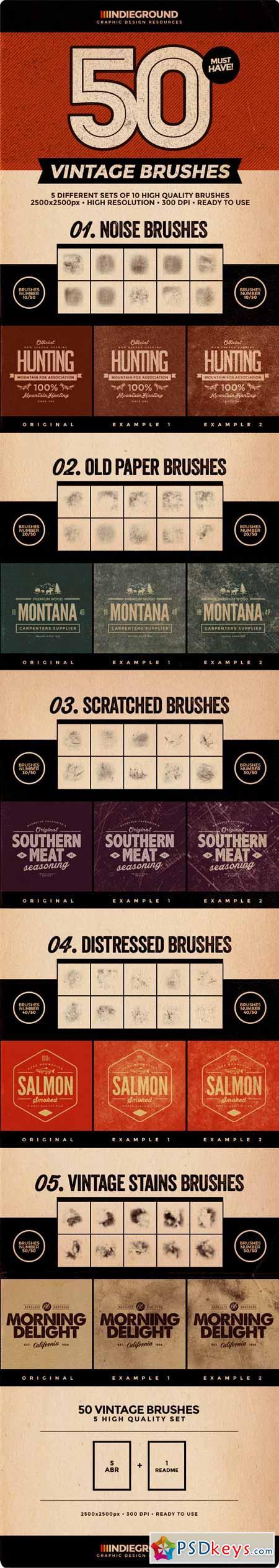 50 Vintage Brushes Set 8146217