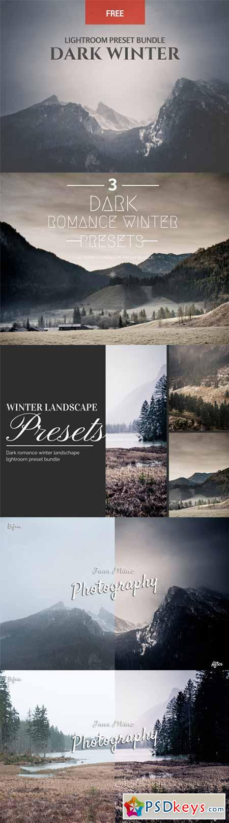 Dark Winter 3 LR Preset Bundle 178740