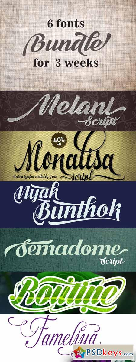 bundle fonts 166804