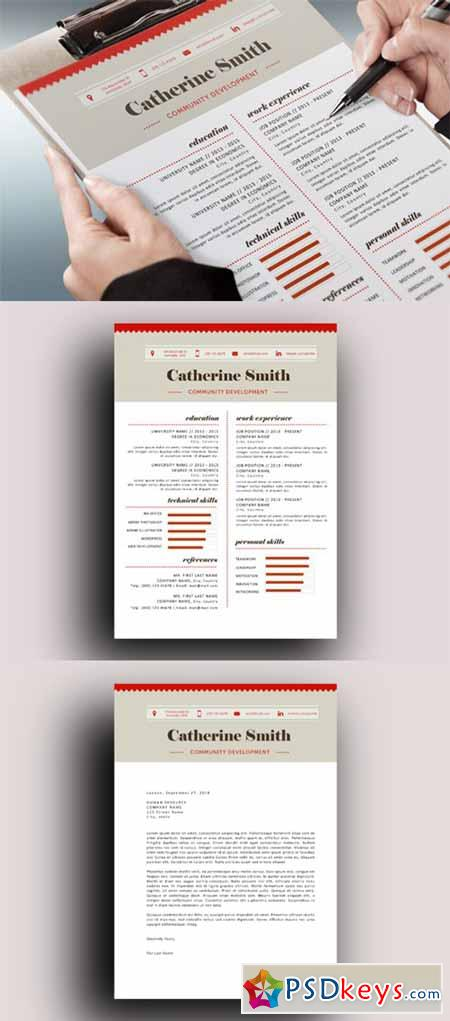 Charted modern resume template 184699