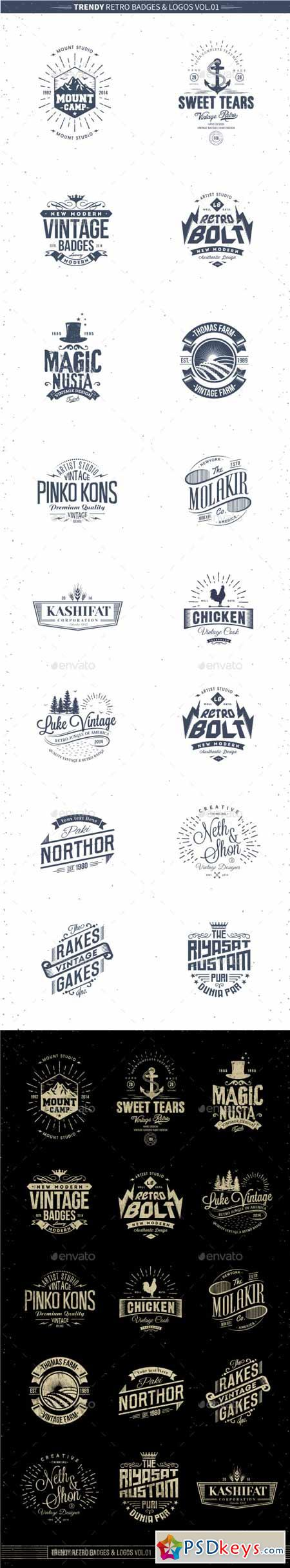 Trendy Retro Badges and Logos Vol.01 10358811