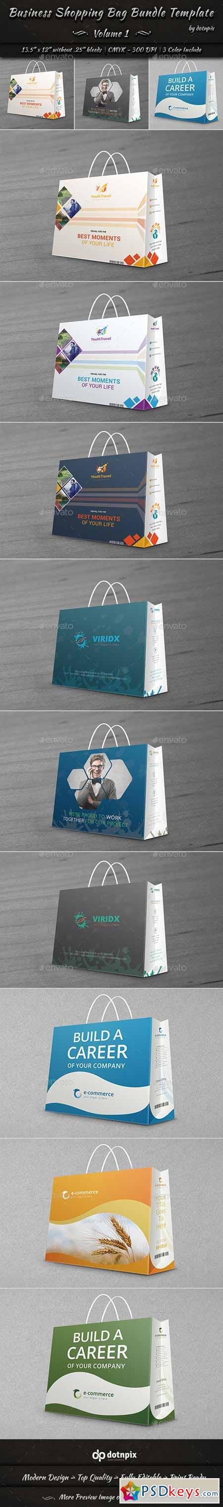 Business Shopping Bag Bundle Template Volume 1 10866469
