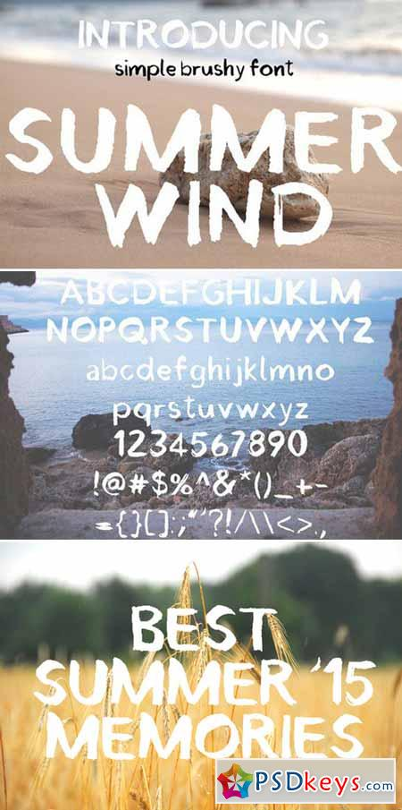 Summer Wind Simple Brush Font 302879