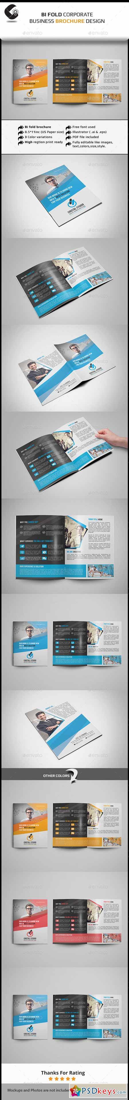 Bi Fold Brochure 11531886