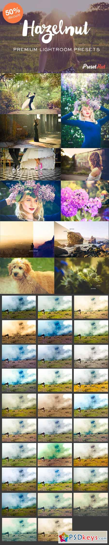 Hazelnut Lightroom Presets 302469