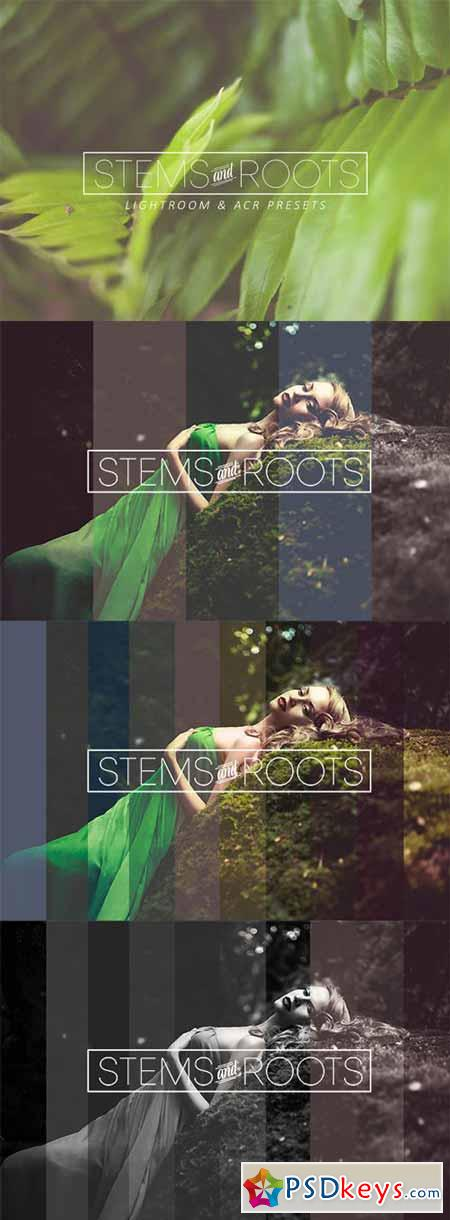 Stems & Roots LR ACR Presets 280476