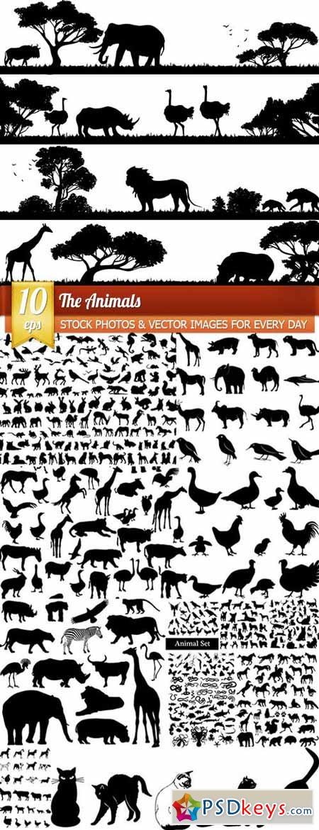 The Animals, 10 x EPS