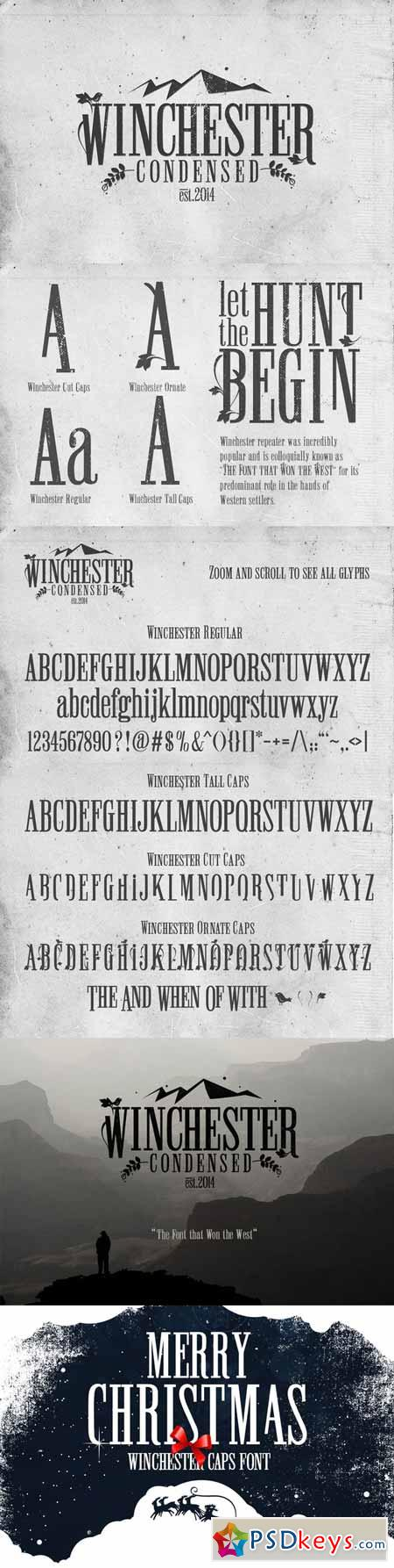 Winchester Condensed Font 104244