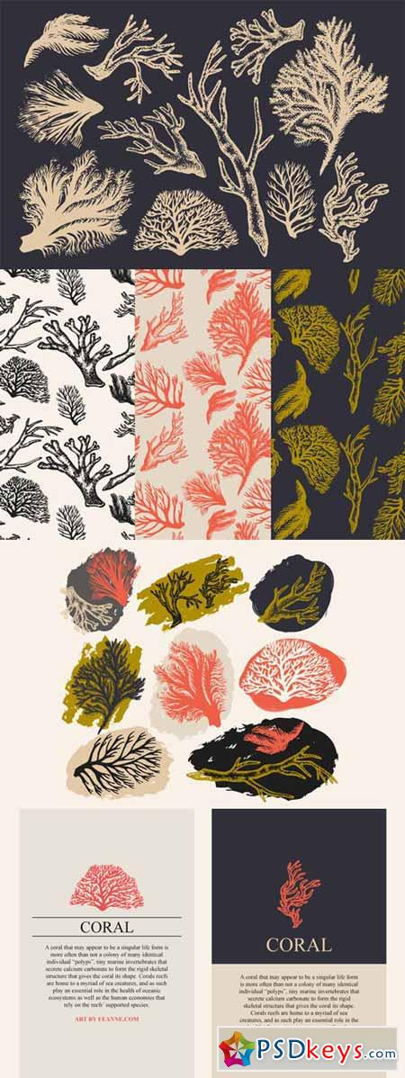 Coral & Seaweed Drawings & Patterns 82508