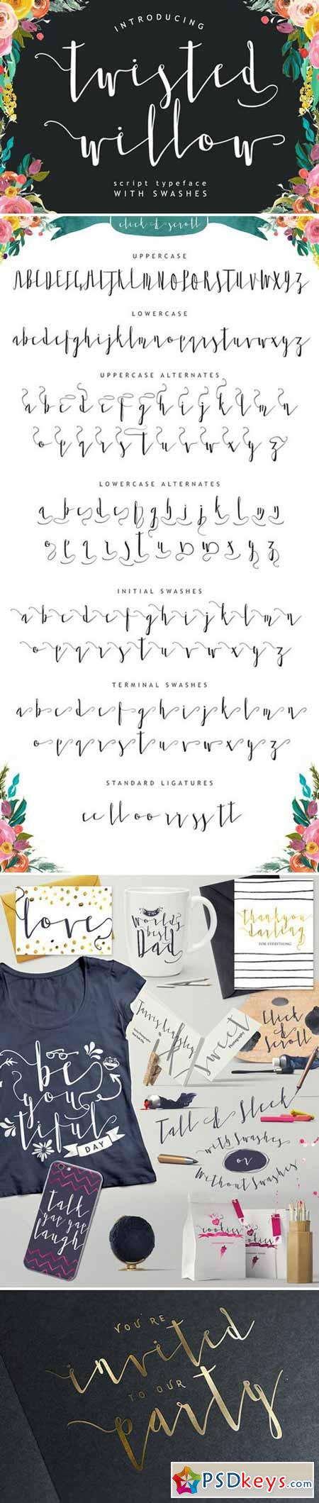 Twisted Willow Typeface Font 352279
