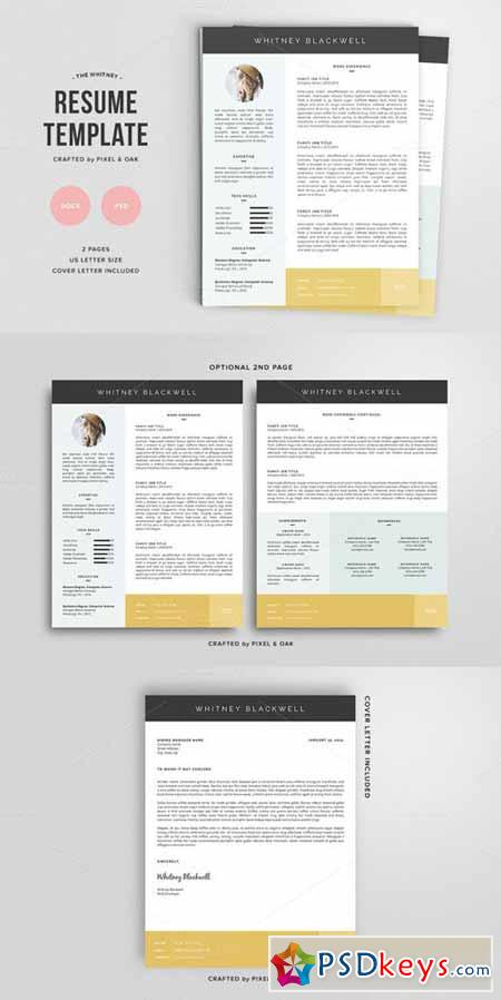 Resume Template The Whitney 3pk 135254