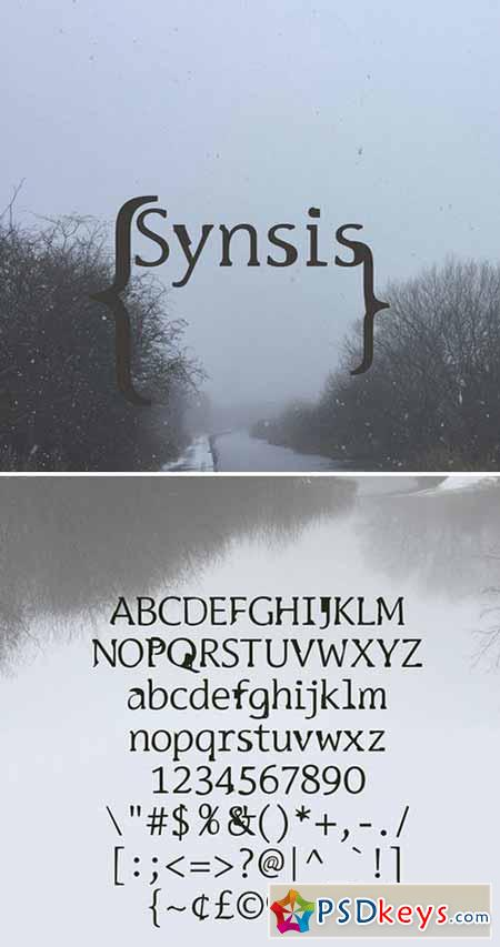 LRC Type - Synsis