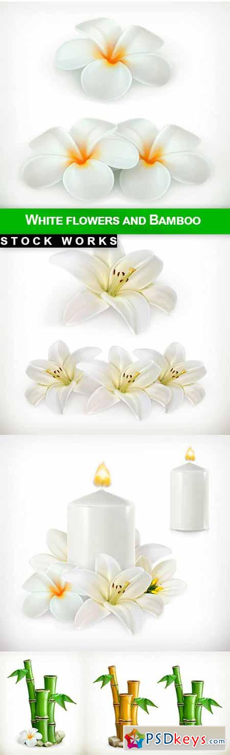 White flowers and Bamboo - 5 EPS