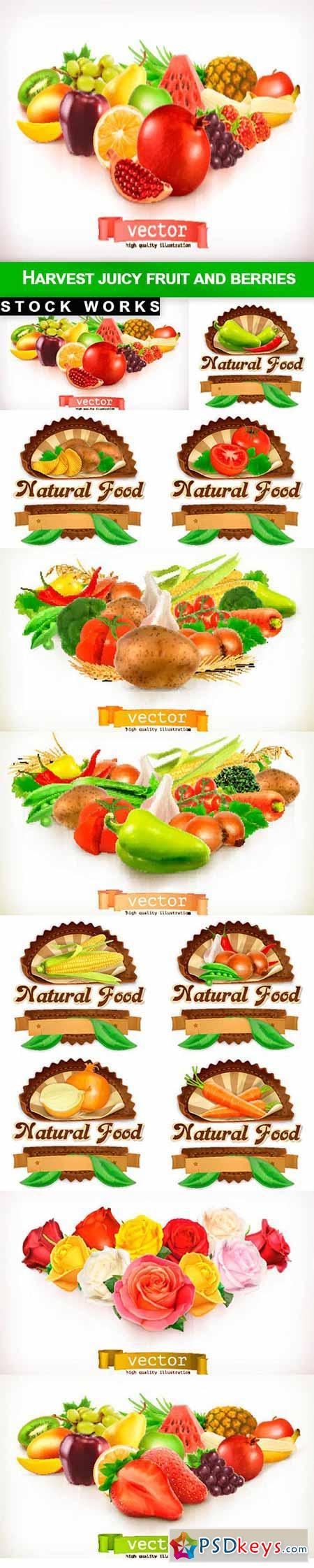 Harvest juicy fruit and berries - 12 EPS